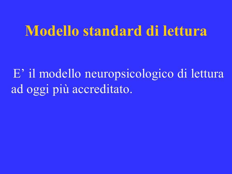 Modello standard di lettura E il modello neuropsicologico di lettura ad oggi più accreditato.