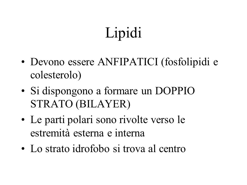 Lipidi Devono essere ANFIPATICI (fosfolipidi e colesterolo) Si dispongono a formare un DOPPIO STRATO (BILAYER) Le parti polari sono rivolte verso le estremità esterna e interna Lo strato idrofobo si trova al centro