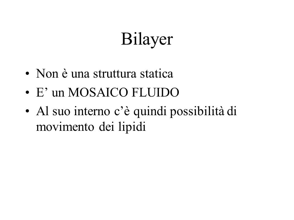 Bilayer Non è una struttura statica E un MOSAICO FLUIDO Al suo interno cè quindi possibilità di movimento dei lipidi