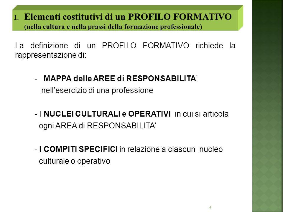 4 La definizione di un PROFILO FORMATIVO richiede la rappresentazione di: - MAPPA delle AREE di RESPONSABILITA nellesercizio di una professione - I NU