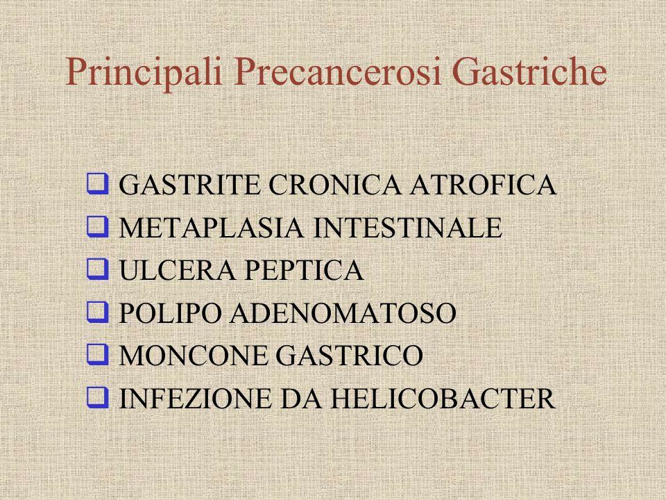 GASTRITE CRONICA ATROFICA METAPLASIA INTESTINALE ULCERA PEPTICA POLIPO ADENOMATOSO MONCONE GASTRICO INFEZIONE DA HELICOBACTER Principali Precancerosi