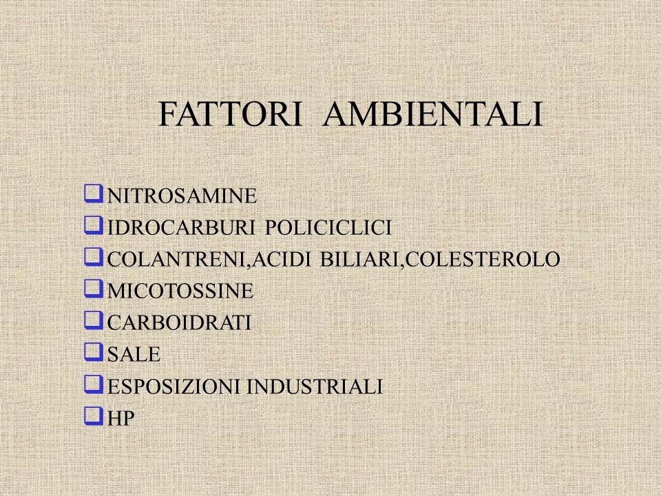 CLINICA dolore epigastrico anemizzazione dimagramento anoressia sarcofobia melena e/o ematemesi vomito (stenosi) Carcinoma Gastrico