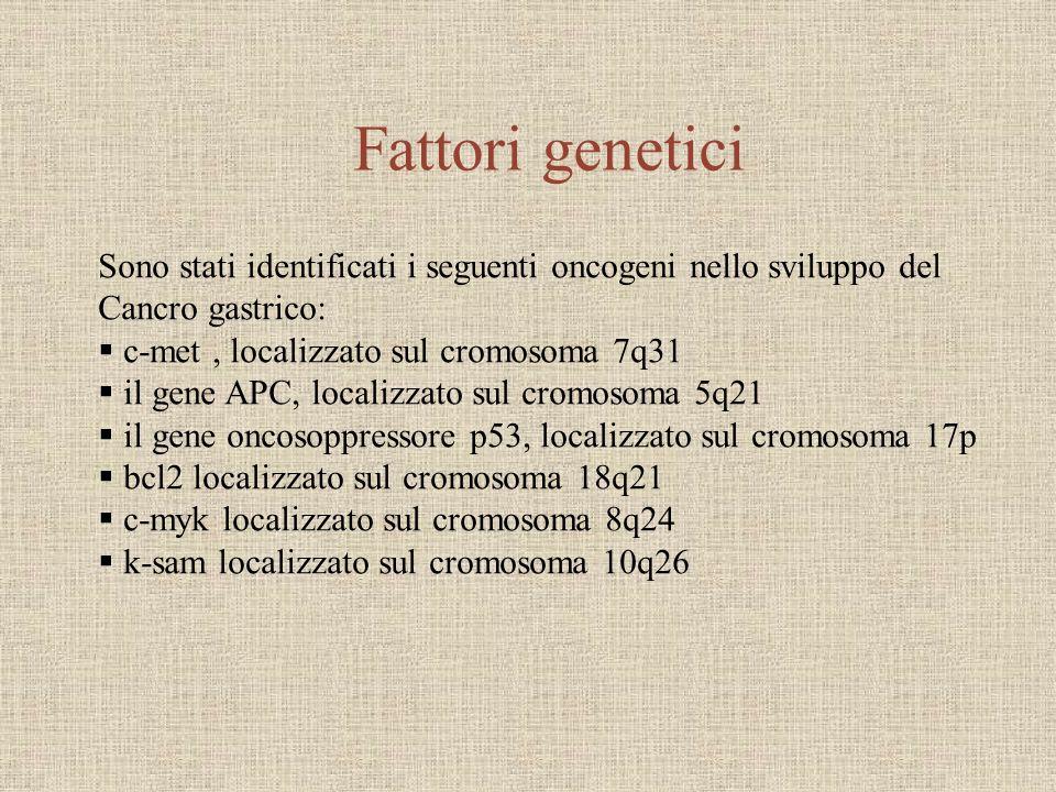 Fattori genetici Sono stati identificati i seguenti oncogeni nello sviluppo del Cancro gastrico: c-met, localizzato sul cromosoma 7q31 il gene APC, lo