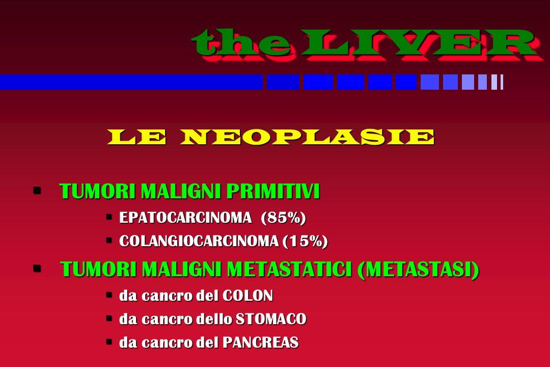 the LIVER the LIVER LE NEOPLASIE TUMORI MALIGNI PRIMITIVI TUMORI MALIGNI PRIMITIVI EPATOCARCINOMA (85%) EPATOCARCINOMA (85%) COLANGIOCARCINOMA (15%) COLANGIOCARCINOMA (15%) TUMORI MALIGNI METASTATICI (METASTASI) TUMORI MALIGNI METASTATICI (METASTASI) da cancro del COLON da cancro del COLON da cancro dello STOMACO da cancro dello STOMACO da cancro del PANCREAS da cancro del PANCREAS