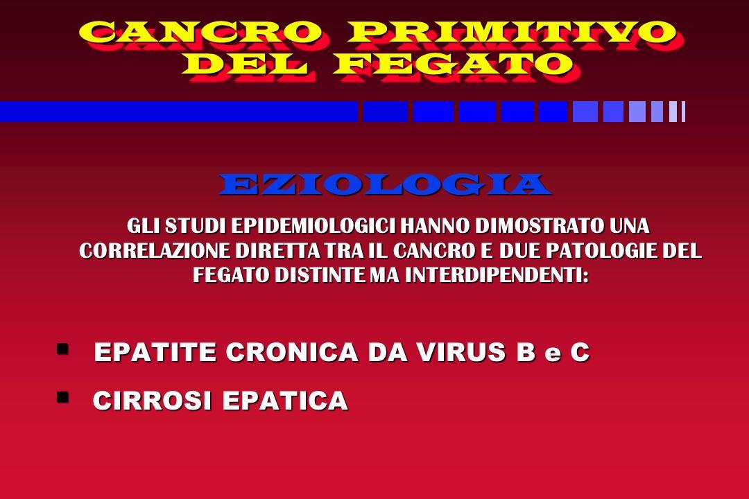 CANCRO PRIMITIVO DEL FEGATO EZIOLOGIA EZIOLOGIA GLI STUDI EPIDEMIOLOGICI HANNO DIMOSTRATO UNA CORRELAZIONE DIRETTA TRA IL CANCRO E DUE PATOLOGIE DEL FEGATO DISTINTE MA INTERDIPENDENTI: GLI STUDI EPIDEMIOLOGICI HANNO DIMOSTRATO UNA CORRELAZIONE DIRETTA TRA IL CANCRO E DUE PATOLOGIE DEL FEGATO DISTINTE MA INTERDIPENDENTI: EPATITE CRONICA DA VIRUS B e C EPATITE CRONICA DA VIRUS B e C CIRROSI EPATICA CIRROSI EPATICA