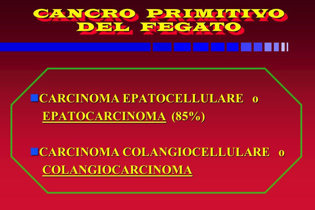 CANCRO PRIMITIVO DEL FEGATO nCARCINOMA EPATOCELLULARE o EPATOCARCINOMA (85%) EPATOCARCINOMA (85%) nCARCINOMA COLANGIOCELLULARE o COLANGIOCARCINOMA COLANGIOCARCINOMA