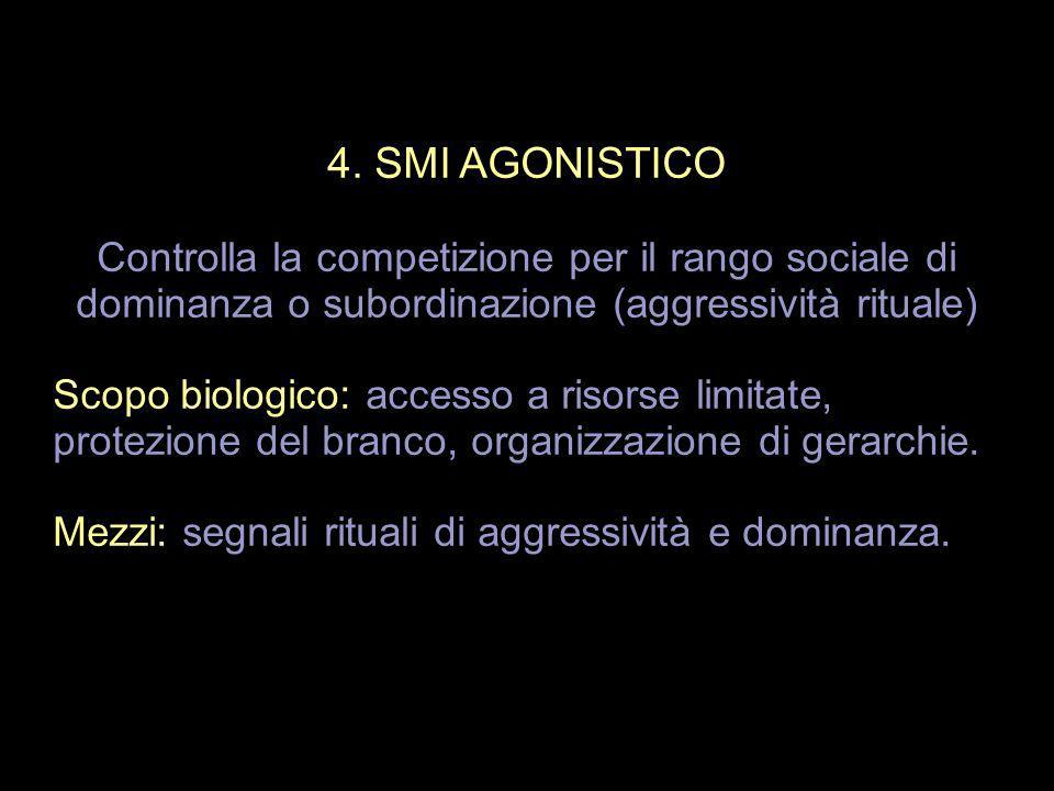 4. SMI AGONISTICO Controlla la competizione per il rango sociale di dominanza o subordinazione (aggressività rituale) Scopo biologico: accesso a risor