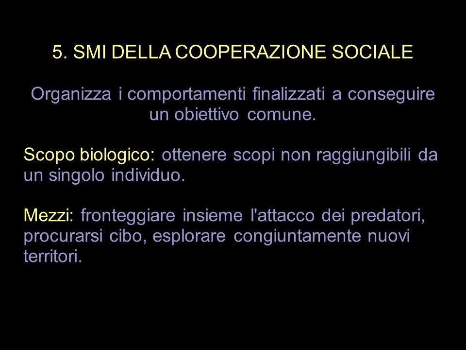 5. SMI DELLA COOPERAZIONE SOCIALE Organizza i comportamenti finalizzati a conseguire un obiettivo comune. Scopo biologico: ottenere scopi non raggiung