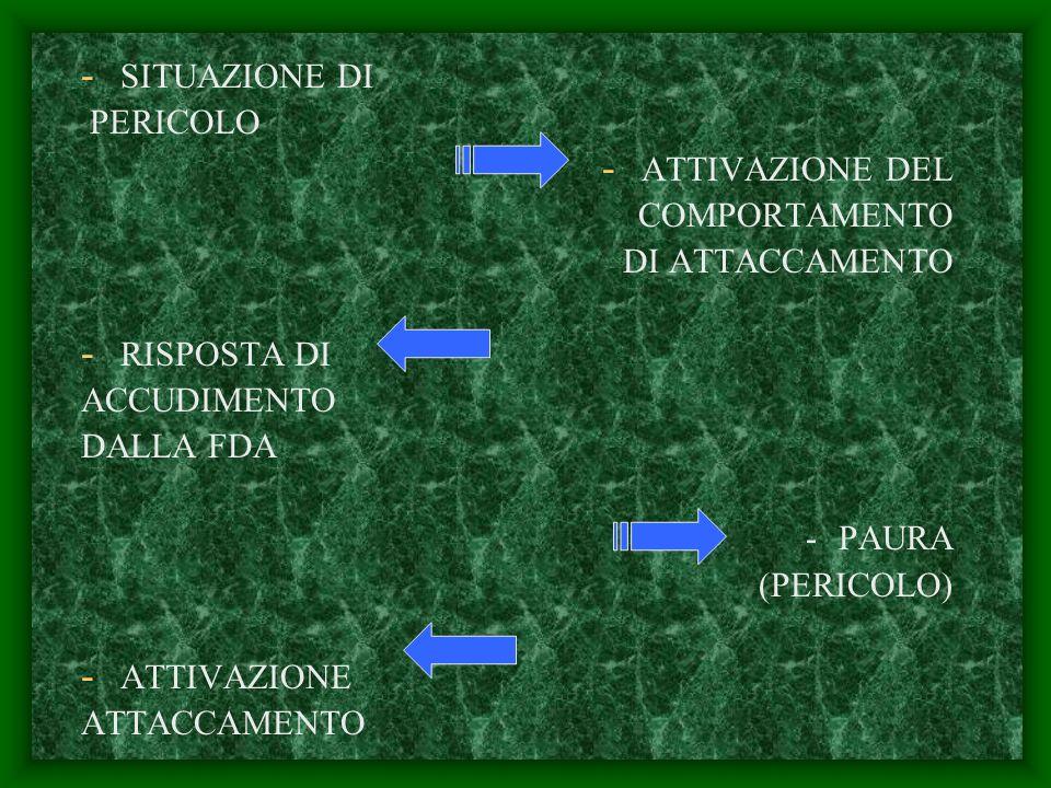 - SITUAZIONE DI PERICOLO - ATTIVAZIONE DEL COMPORTAMENTO DI ATTACCAMENTO - RISPOSTA DI ACCUDIMENTO DALLA FDA -PAURA (PERICOLO) - ATTIVAZIONE ATTACCAMENTO