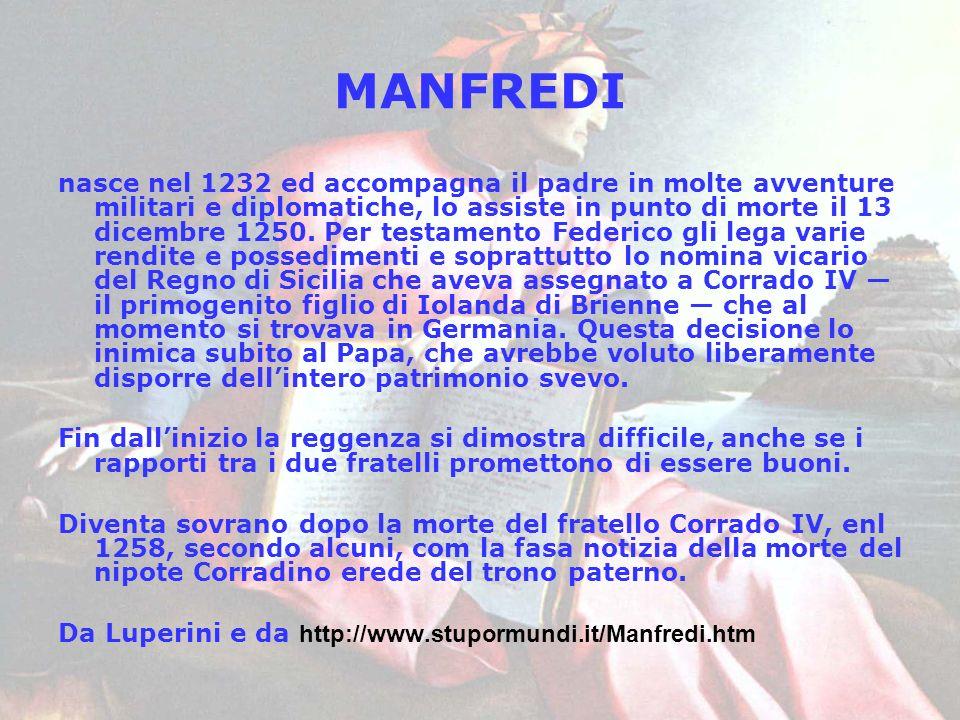 MANFREDI nasce nel 1232 ed accompagna il padre in molte avventure militari e diplomatiche, lo assiste in punto di morte il 13 dicembre 1250. Per testa