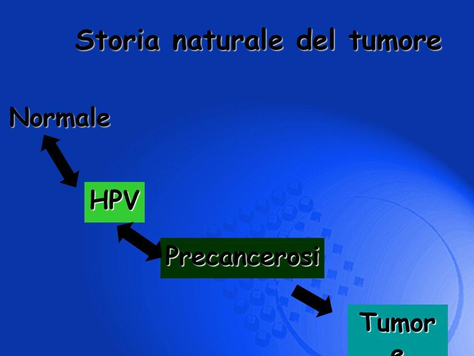 Storia naturale del tumore Normale Precancerosi Tumor e HPV