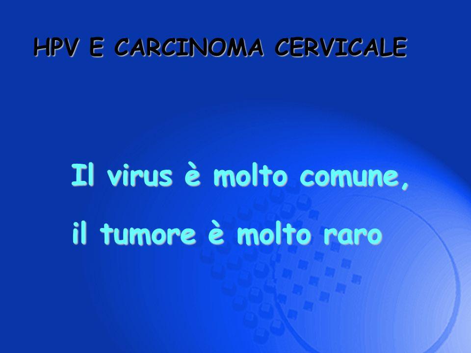 HPV E CARCINOMA CERVICALE Il virus è molto comune, il tumore è molto raro