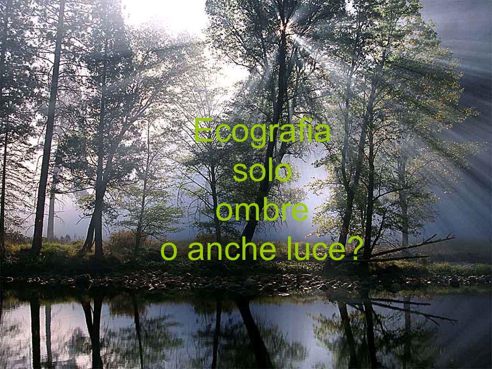 Ecografia solo ombre o anche luce?
