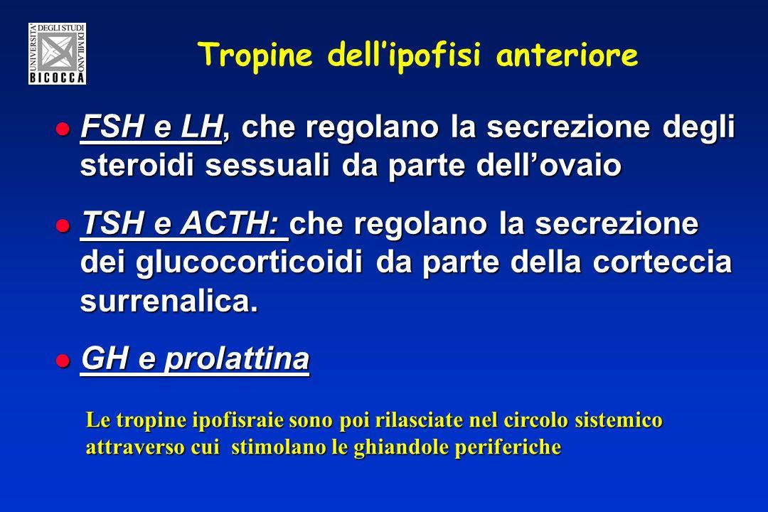 Tropine dellipofisi anteriore FSH e LH, che regolano la secrezione degli steroidi sessuali da parte dellovaio FSH e LH, che regolano la secrezione degli steroidi sessuali da parte dellovaio TSH e ACTH: che regolano la secrezione dei glucocorticoidi da parte della corteccia surrenalica.