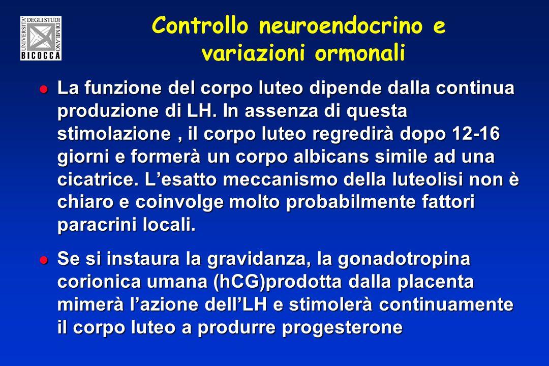 Controllo neuroendocrino e variazioni ormonali La funzione del corpo luteo dipende dalla continua produzione di LH.