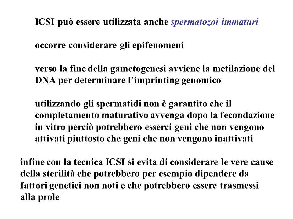 ICSI può essere utilizzata anche spermatozoi immaturi occorre considerare gli epifenomeni verso la fine della gametogenesi avviene la metilazione del