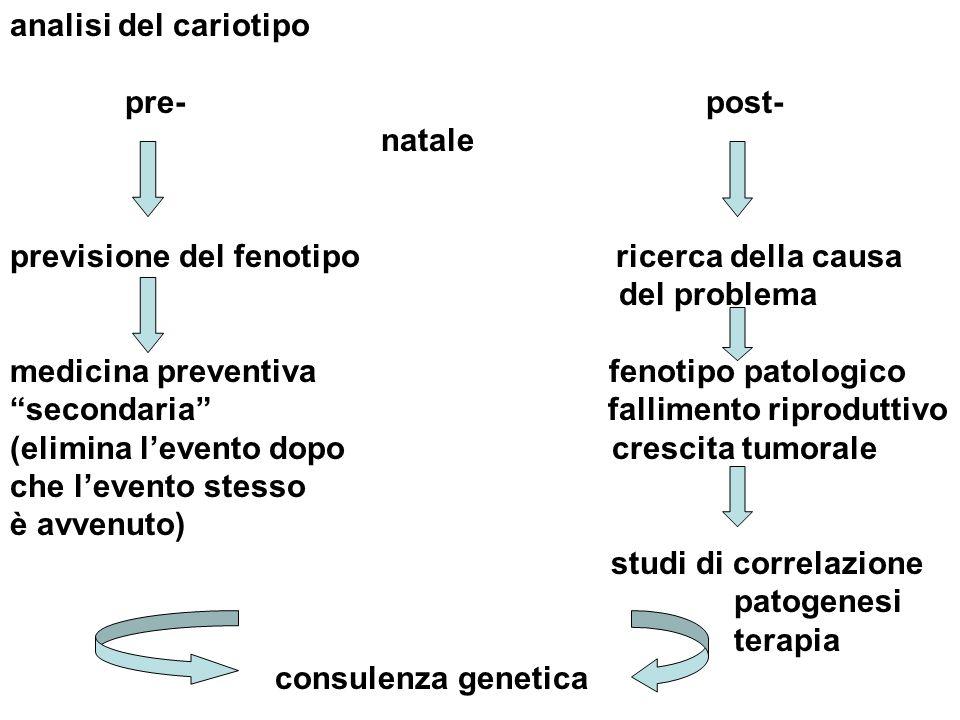 analisi del cariotipo pre- post- natale previsione del fenotipo ricerca della causa del problema medicina preventiva fenotipo patologico secondaria fa