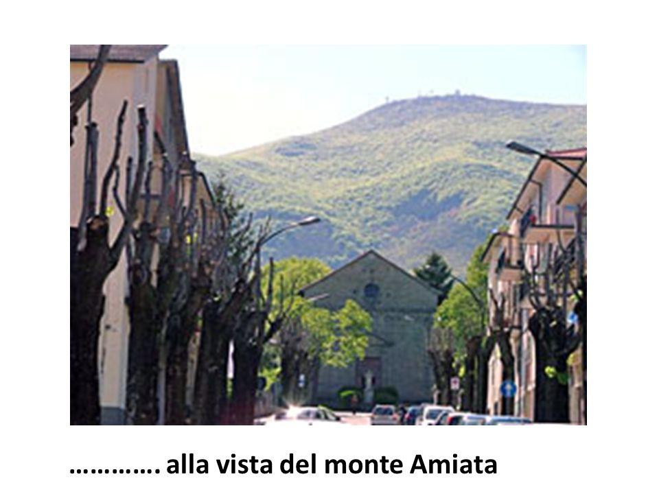 …………. alla vista del monte Amiata