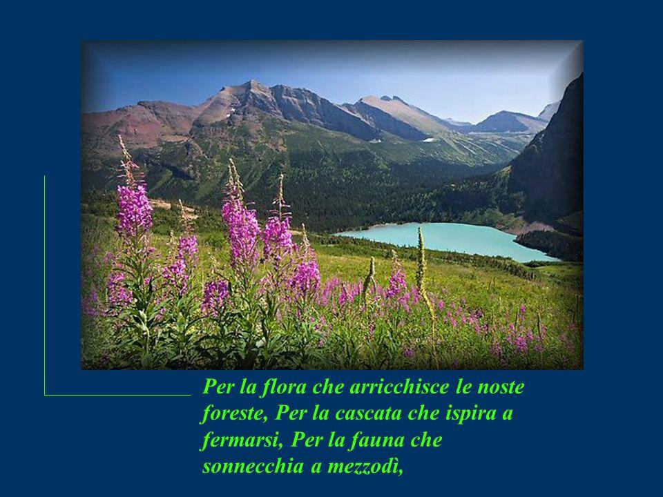 Per le onde che ci riconducono al porto, Per le sementi che diventano messe, Signore, voglio cantare il tuo Nome !