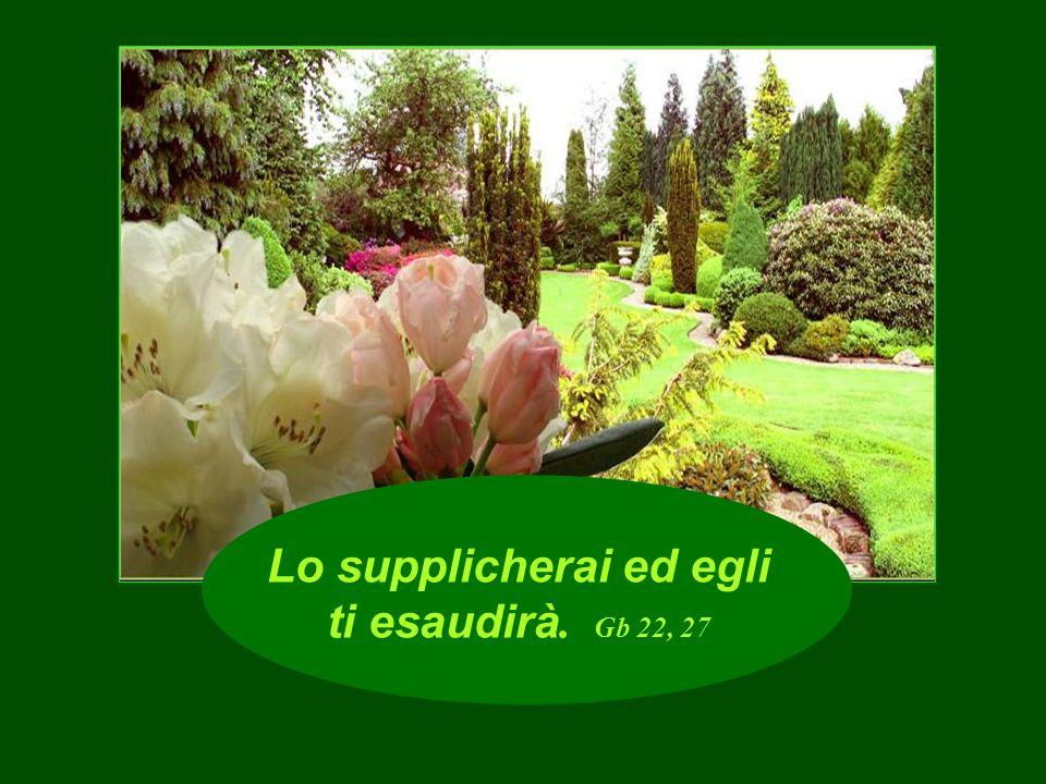 La grazia del Signore è da sempre, dura in eterno. Sal 103, 17