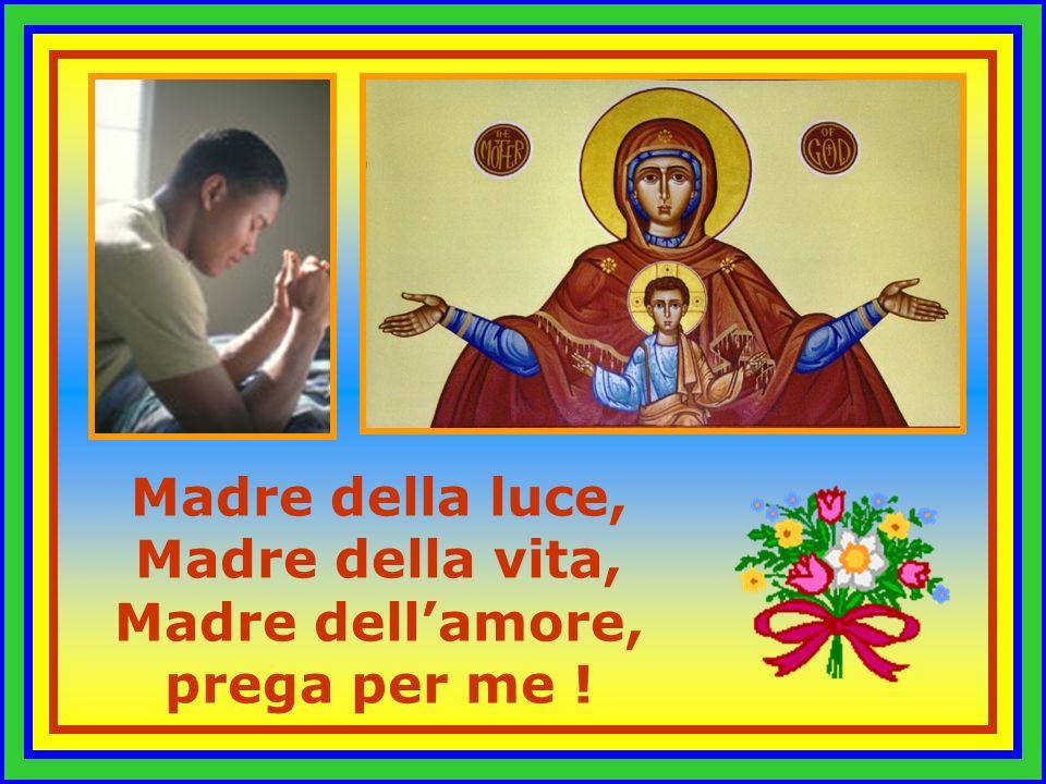 Madre di Gesù, Salvatore e Signore, prega per me !