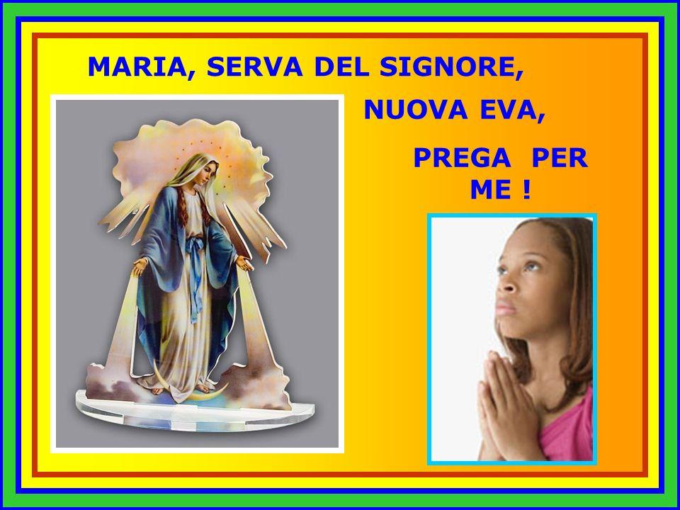 Maria, Vergine Immacolata, Madre dell Chiesa, Vergine del Rosario, prega per me !