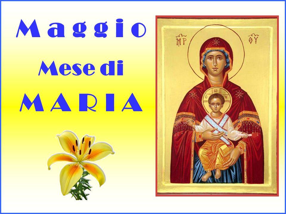 Maria, Regina degli angeli e dei santi, Maria, Porta del Cielo, prega per me e per i miei fratelli e sorelle.