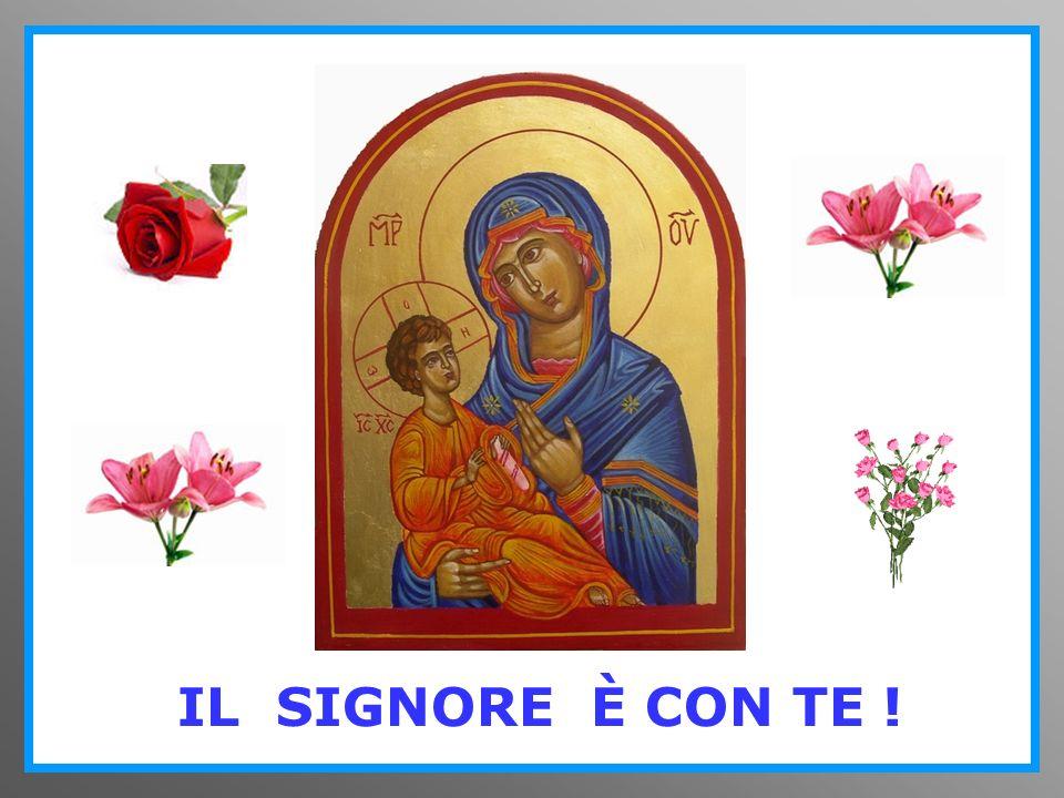 Madre della luce, Madre della vita, Madre dellamore, prega per me !