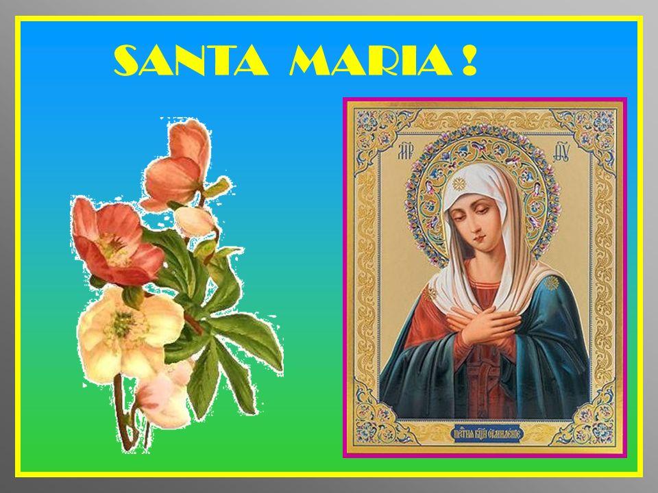 MARIA, SERVA DEL SIGNORE, NUOVA EVA, PREGA PER ME !