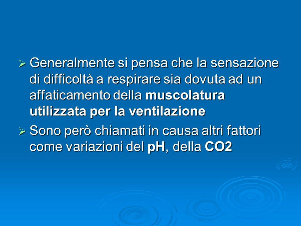Generalmente si pensa che la sensazione di difficoltà a respirare sia dovuta ad un affaticamento della muscolatura utilizzata per la ventilazione Generalmente si pensa che la sensazione di difficoltà a respirare sia dovuta ad un affaticamento della muscolatura utilizzata per la ventilazione Sono però chiamati in causa altri fattori come variazioni del pH, della CO2 Sono però chiamati in causa altri fattori come variazioni del pH, della CO2