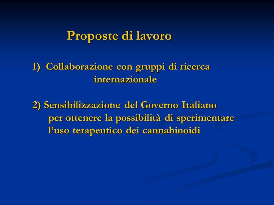 Proposte di lavoro: Proposte di lavoro 1) Collaborazione con gruppi di ricerca internazionale 2) Sensibilizzazione del Governo Italiano per ottenere l