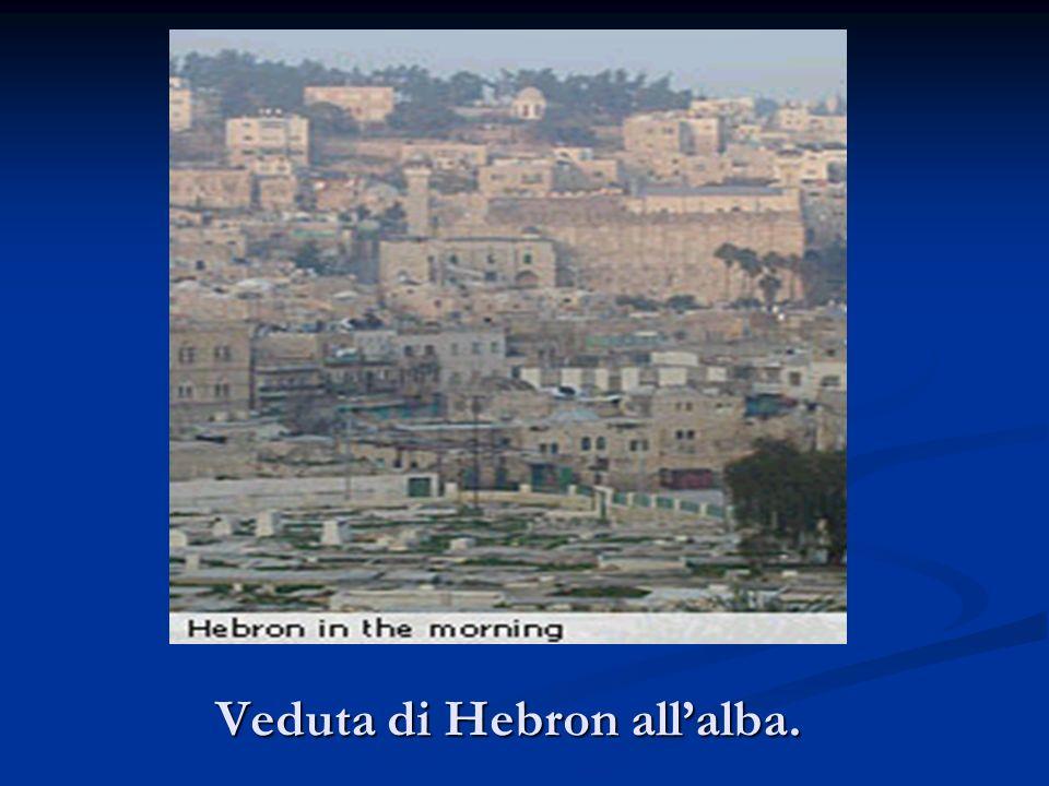 Veduta di Hebron allalba.