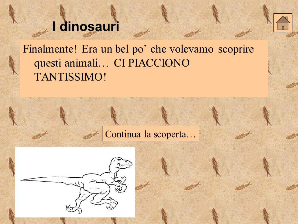 I dinosauri Finalmente! Era un bel po che volevamo scoprire questi animali… CI PIACCIONO TANTISSIMO! Continua la scoperta…