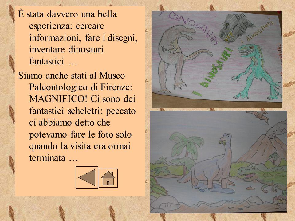 È stata davvero una bella esperienza: cercare informazioni, fare i disegni, inventare dinosauri fantastici … Siamo anche stati al Museo Paleontologico