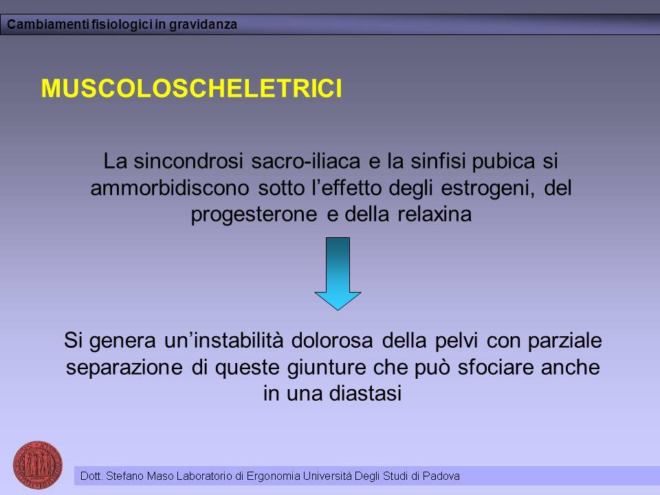 Cambiamenti fisiologici in gravidanza MUSCOLOSCHELETRICI La sincondrosi sacro-iliaca e la sinfisi pubica si ammorbidiscono sotto leffetto degli estrog