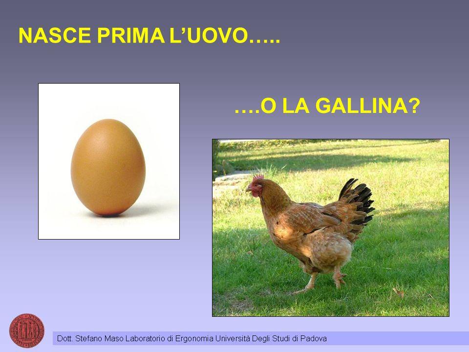 NASCE PRIMA LUOVO….. ….O LA GALLINA?