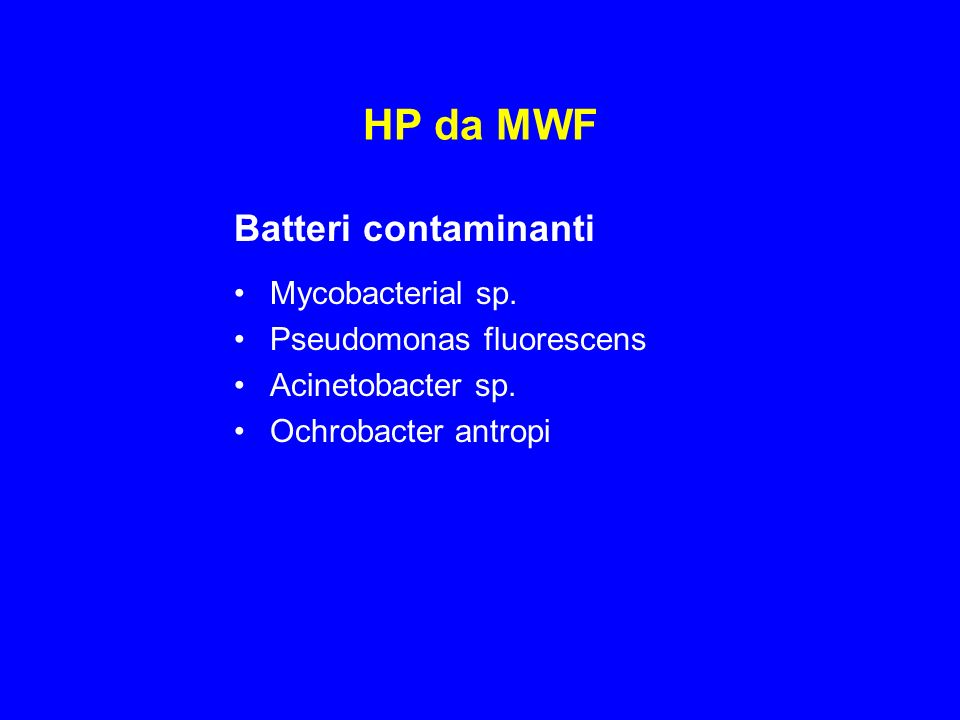 HP da MWF Batteri contaminanti Mycobacterial sp.Pseudomonas fluorescens Acinetobacter sp.