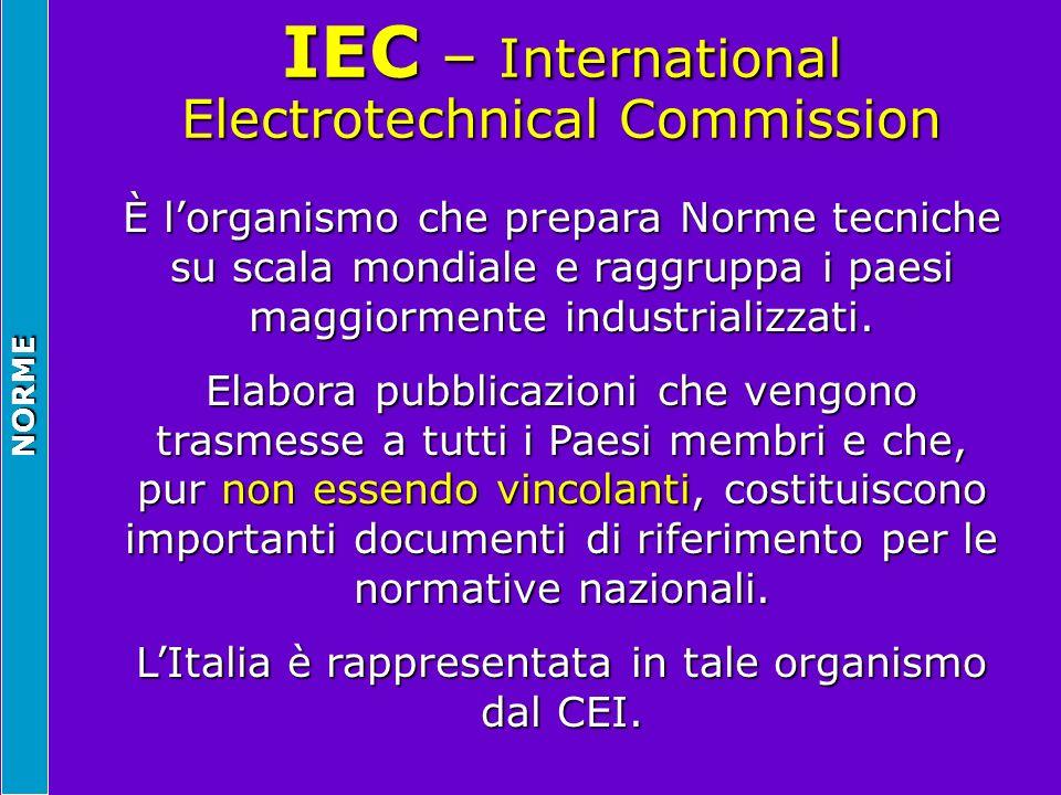 NORME IEC – International Electrotechnical Commission È lorganismo che prepara Norme tecniche su scala mondiale e raggruppa i paesi maggiormente indus