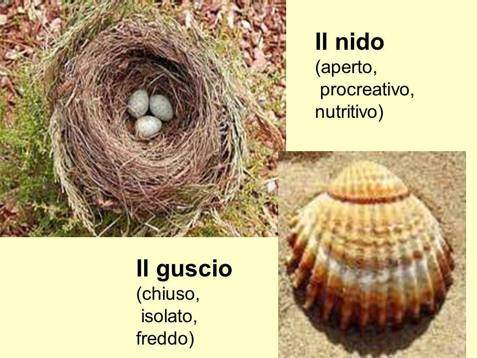 Il nido (aperto, procreativo, nutritivo) Il guscio (chiuso, isolato, freddo)