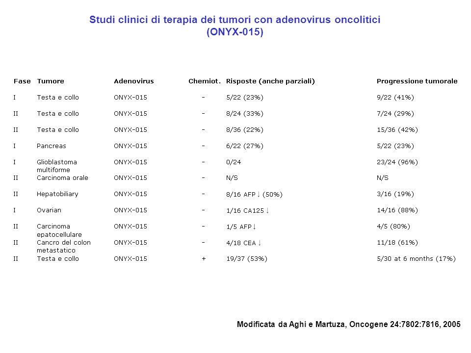 Studi clinici di terapia dei tumori con adenovirus oncolitici (ONYX-015) Modificata da Aghi e Martuza, Oncogene 24:7802:7816, 2005