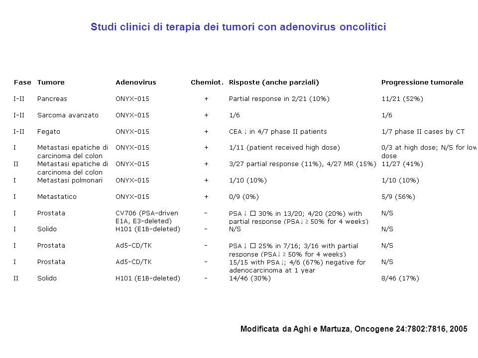 Studi clinici di terapia dei tumori con adenovirus oncolitici Modificata da Aghi e Martuza, Oncogene 24:7802:7816, 2005