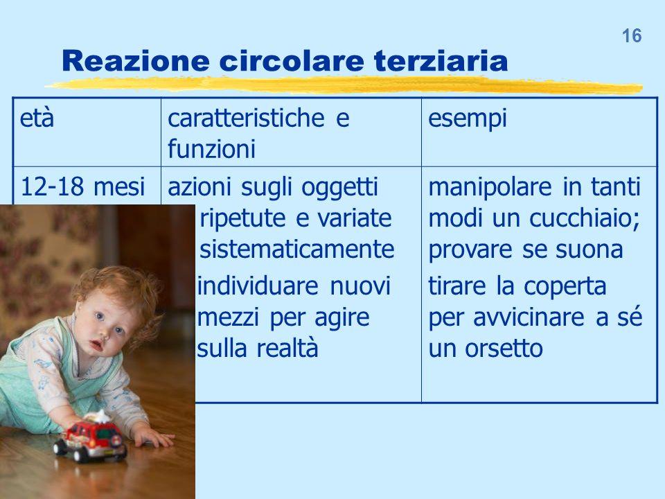 16 Reazione circolare terziaria etàcaratteristiche e funzioni esempi 12-18 mesiazioni sugli oggetti... ripetute e variate... sistematicamente … indivi