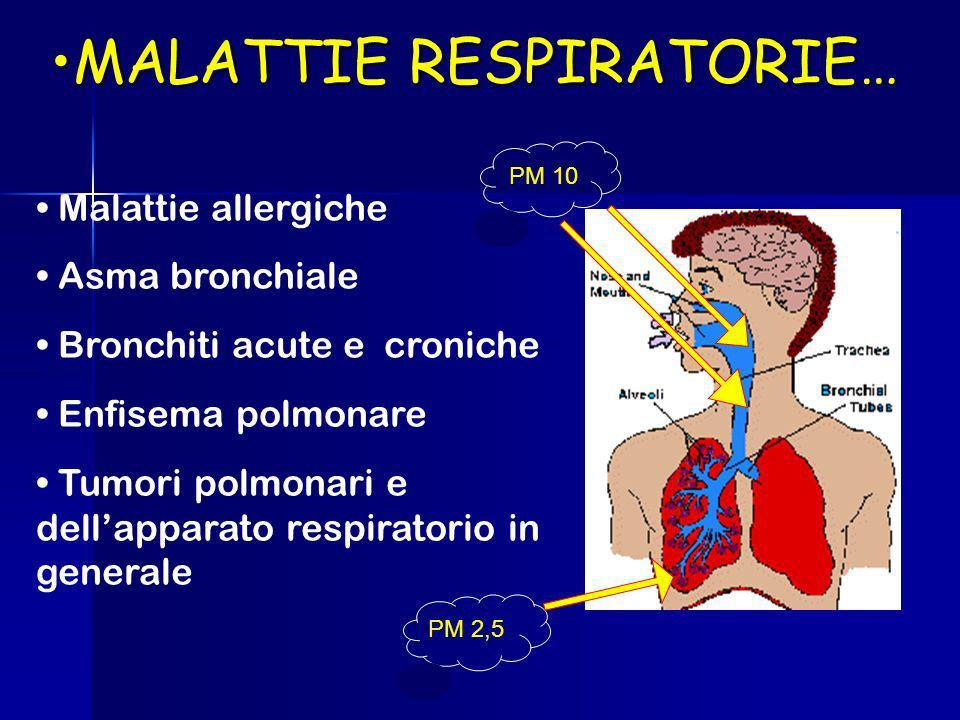 MALATTIE RESPIRATORIE…MALATTIE RESPIRATORIE… Malattie allergiche Asma bronchiale Bronchiti acute e croniche Enfisema polmonare Tumori polmonari e dellapparato respiratorio in generale PM 10 PM 2,5