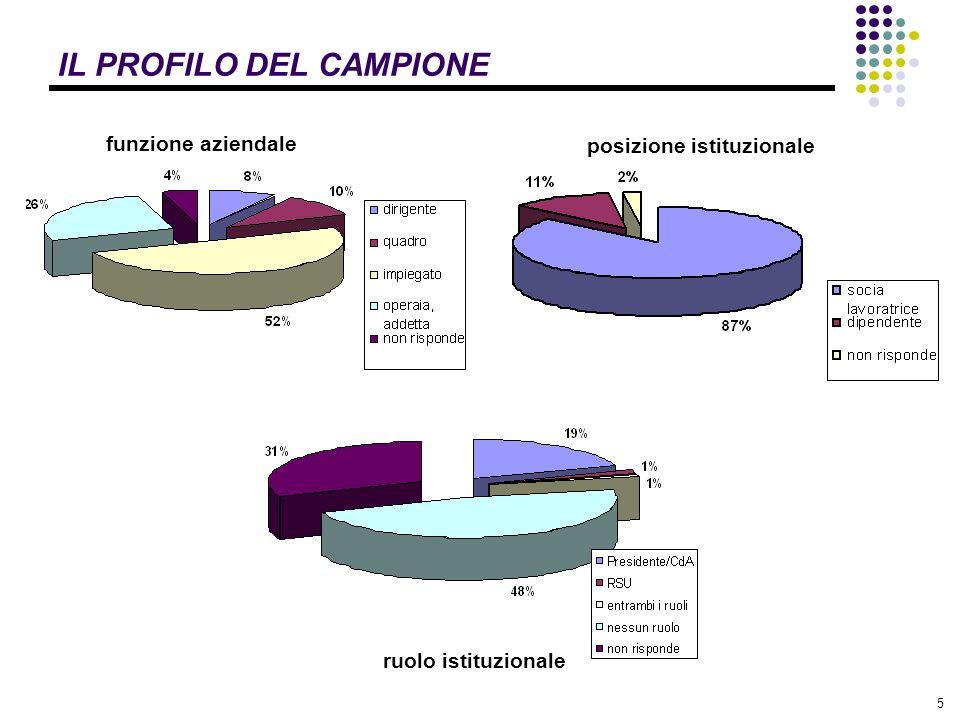 5 IL PROFILO DEL CAMPIONE ruolo istituzionale posizione istituzionale funzione aziendale