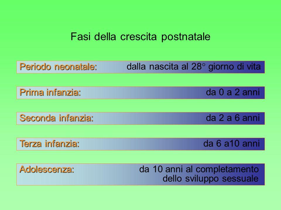 Periodo neonatale: Periodo neonatale: dalla nascita al 28° giorno di vita Prima infanzia: Prima infanzia: da 0 a 2 anni Seconda infanzia: Seconda infa