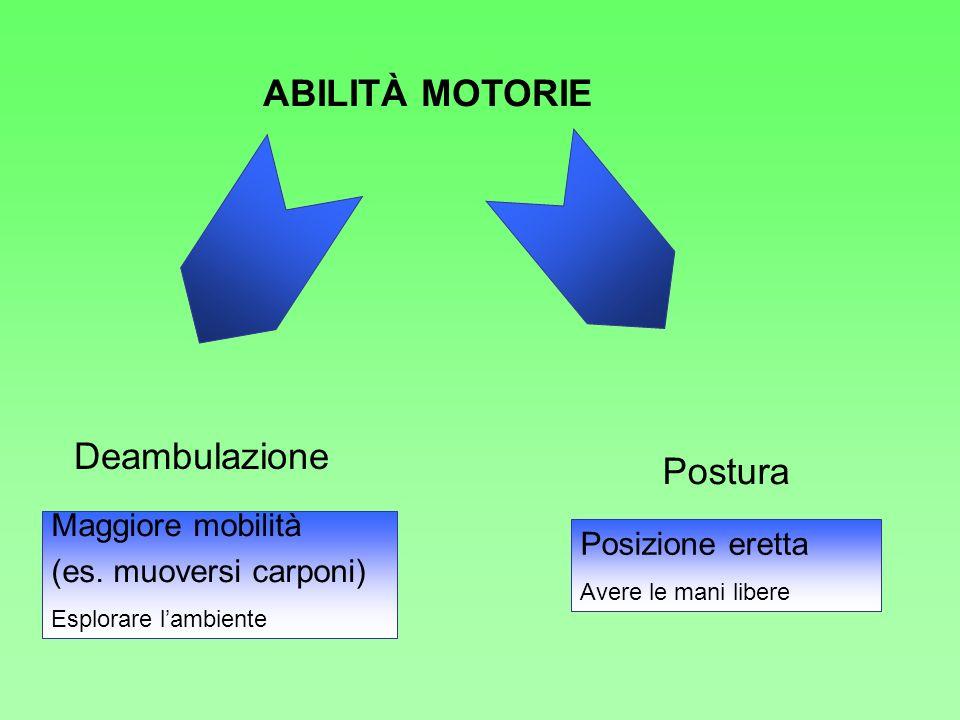 ABILITÀ MOTORIE Maggiore mobilità (es. muoversi carponi) Esplorare lambiente Posizione eretta Avere le mani libere Deambulazione Postura