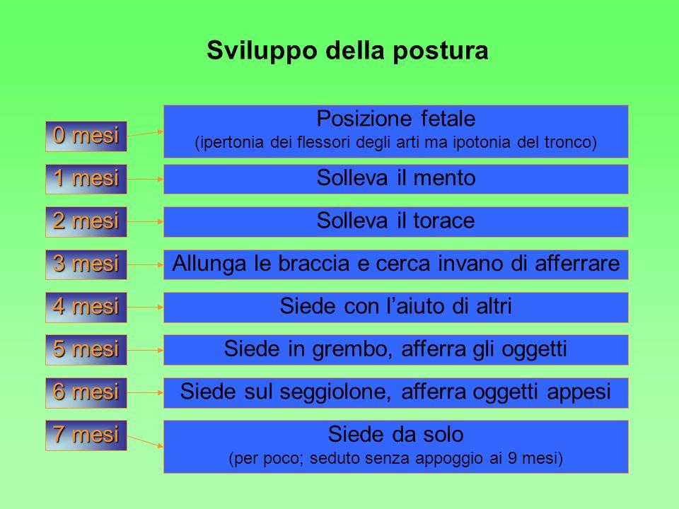 Sviluppo della postura 0 mesi 1 mesi 2 mesi 3 mesi 4 mesi 5 mesi 6 mesi Posizione fetale (ipertonia dei flessori degli arti ma ipotonia del tronco) So