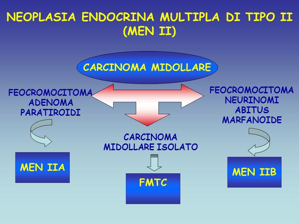 NEOPLASIA ENDOCRINA MULTIPLA DI TIPO II (MEN II) CARCINOMA MIDOLLARE FEOCROMOCITOMA ADENOMA PARATIROIDI MEN IIA FEOCROMOCITOMA NEURINOMI ABITUS MARFAN