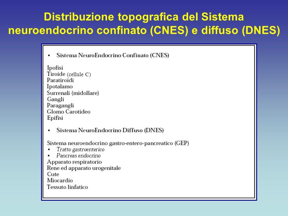 Biologicamente attivi (BANTs) Biologicamente inattivi (BINTs) Capaci di provocare una sindrome specifica Bassi o assenti livelli di peptidi circolanti Peptidi biologicamente inattivi Incapaci di provocare una sindrome specifica