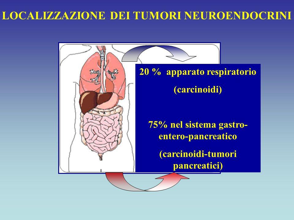 20 % apparato respiratorio (carcinoidi) 75% nel sistema gastro- entero-pancreatico (carcinoidi-tumori pancreatici) LOCALIZZAZIONE DEI TUMORI NEUROENDO